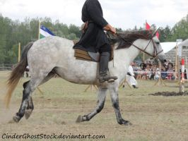 Hungarian Festival Stock 008 by CinderGhostStock