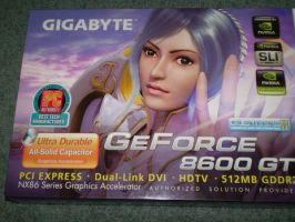 My 1st Graphics Card by SeetherX