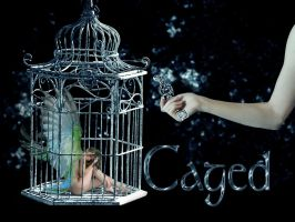 caged by sgorbissa