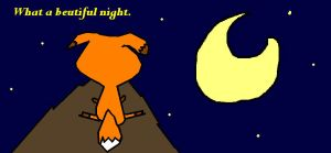 A Fox's Night by Miroet