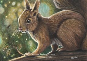 Little Lights - Squirrel by Vanory