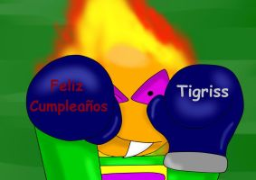 Cumple Tigriss 2013 by Quilmer