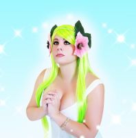 Shaymin Used Healing Wish by HeatherCosplay