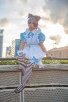 Ceil in Wonderland (Black Butler Cosplay) by TMProjection