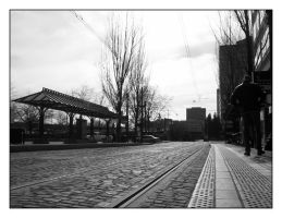 The Platform by houseofleaves