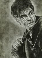Harry Potter by bidonka