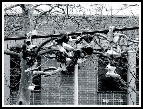 Shoes Hanging in Brooklyn by dc2610