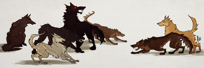 teen wolf's wolfs by radacs