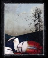 . dreaming in the mothlight by fragilemuse-org