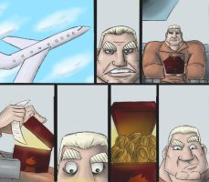 VW: Shmeerm on a Plane by GrymmBadger
