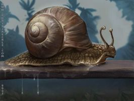 Slowly but slimy by ChrisJaeckle