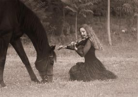 EQUUS and FIDDLE 2 by EquusAhu