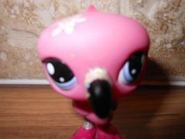 lps flamingo custom (front head view) by megatiger42