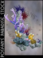 Coral Reef 001 by poserfan-stock