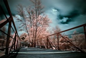 iNfraRed - bAtam 1 by shin-ex