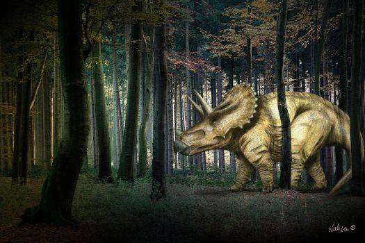 Triceratops in the woods by NaliZen
