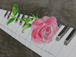 Rose on the piano by hnorby94