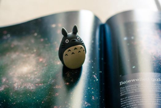 I will be with Totoro, but where will Totoro be? by anna-earwen