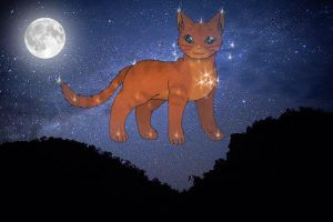 Firestar, the Fire that Saved the Clans by WildflowerXWildstar