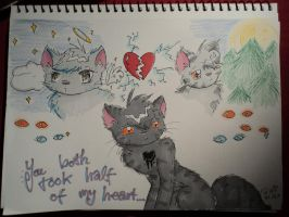 Half of my heart.. by TriaWolf