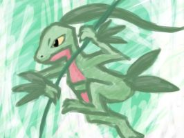 Grovyle by HeartSquared