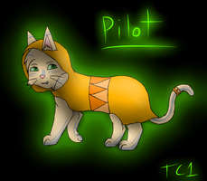 Pilot by slycooper998