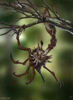 Asymmetrical Tree Crab by rpowell77