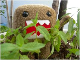 "Domo Kun in ""da"" jungle by Frikimaru"