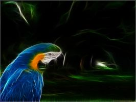 Fractal Parrot Wallpaper by PimArt