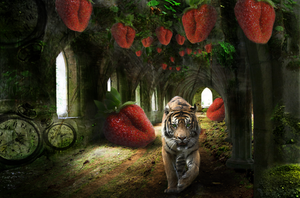 strawberry dream by leanme