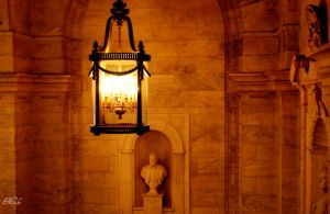 New York Public Library by Poet515
