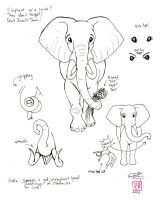Draw an Elephant 2 part2 by Diana-Huang