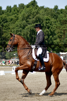 Dressage 1 by JullelinPhotography