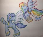 Rainbow Dash At The Gala - Full color - Cat by shallowhooves