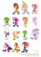 1993 - 2008 Ladies of Sonic by nattherat