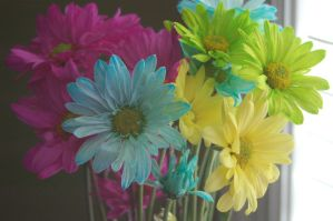 Colorful Flowers by Green-Ocean-Stock