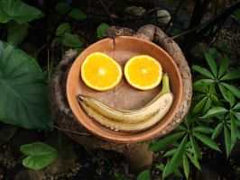 Fruit Smile by Scarecrowlover