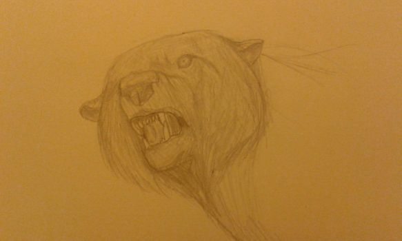 Angry Bear by mistsoul777