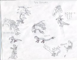 Pyre Tempest Sketches by Dragonsmana