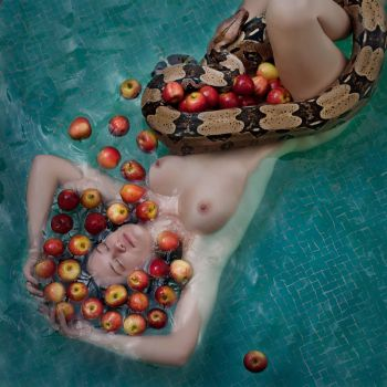 nest  of apples by poivre