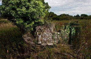 Ruins of St Mary's Church, East Stoke, Dorset by Xs9nake
