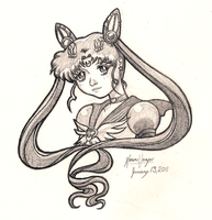 Sailor Chibi Moon by miserable-dreamer