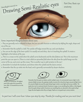 Eyes Part 1 - Basic Anatomy by TakenFlyght