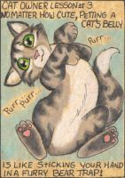 Cat Owner Lesson 3 - Art Card by stephanielynn