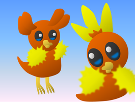 Beta Torchic 2 by Quacksquared