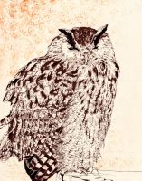 the great owl by tavaron