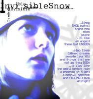 snow is unseen by InvisibleSnow