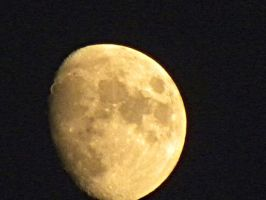 almost full moon.. by sherby20