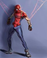 Mangaverse Spiderman DSC by Vimes-DA