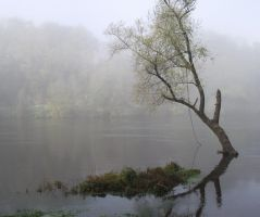 Fog on the Dordogne river 07 by HermitCrabStock